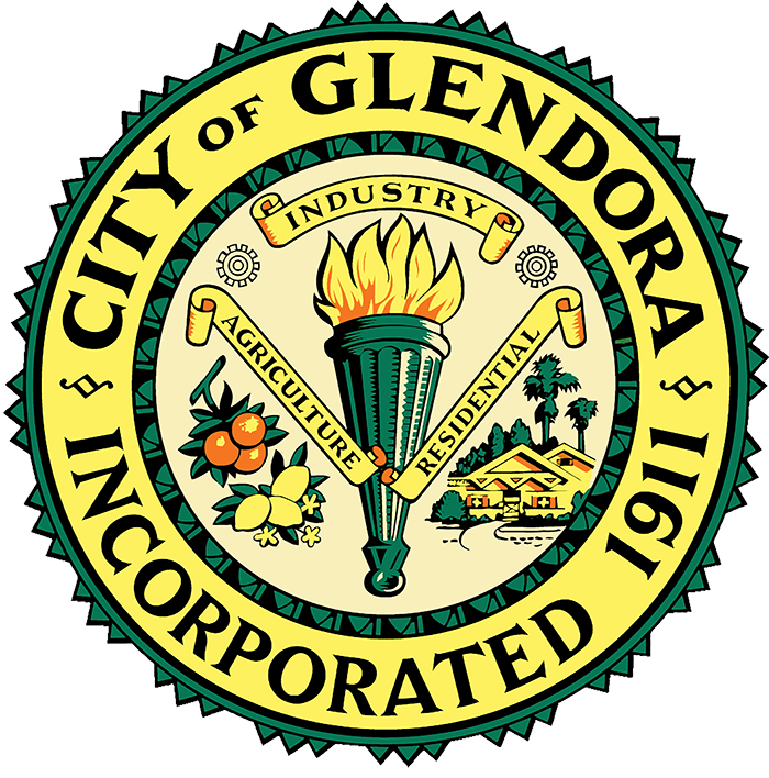CITY SEAL LARGE PNG