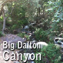 BIG-DALTON-CANYON-130-x-130-TRAILS-AND-TREES-Page