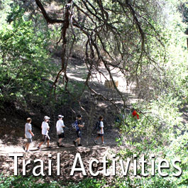 TRAIL ACTIVITIES-265x265