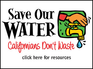 Save-Our-Water-Resources-Button-300x225