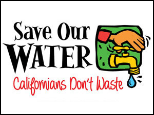 Save-Our-Water-DONT-WASTE-Button-300x225