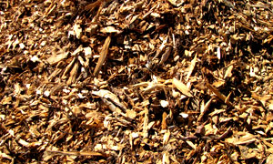 mulch-landscape-tips