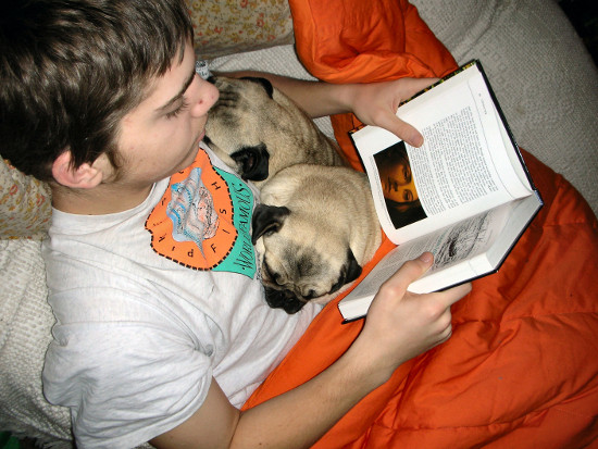 a boy reads to a dog